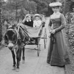 family-cart-150x150